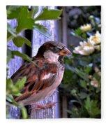 Sparrow In The Shrubs Fleece Blanket