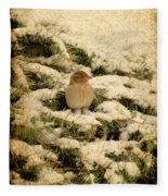 Sparrow In Winter II - Textured Fleece Blanket