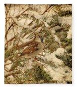Sparrow In Winter Iv - Textured Fleece Blanket