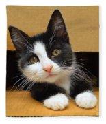 Special Delivery Tuxedo Kitten Fleece Blanket