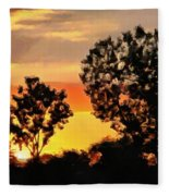 Spectacular Sunset In The Midwest Fleece Blanket