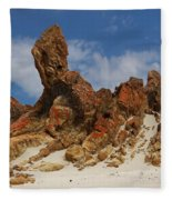 Sphinx Of South Australia Fleece Blanket