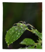 Spider And The Shower Fleece Blanket