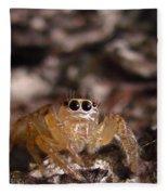 Spider Eyes Fleece Blanket