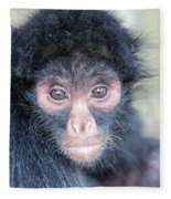 Spider Monkey Face Fleece Blanket