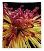 Spider Chrysanthemum Fleece Blanket