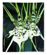 Spider Orchid Brassia Fleece Blanket