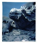 Spike Fleece Blanket
