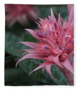 Spiky Pink Fleece Blanket