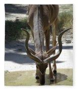 Spiral Horned Antelope Drinking Fleece Blanket