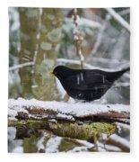 Splash. Eurasian Blackbird Fleece Blanket