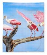 Spoonbill Party Fleece Blanket