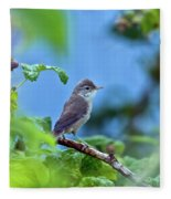 Spotted Flycatcher Muscicapa Striata .  Fleece Blanket