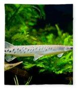 Spotted Gar Aquarium Fishes Pair Fleece Blanket