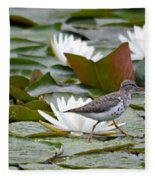 Spotted Sandpiper And Lilies Fleece Blanket
