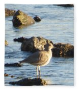 Spotted Sandpiper Keeping Sentry On The Bay Fleece Blanket