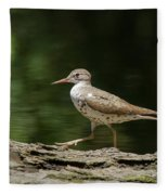 Spotted Sandpiper Fleece Blanket