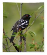 Spotted Towhee Fleece Blanket