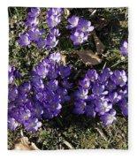 Spring 3 Fleece Blanket