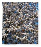 Spring As Rhapsody Fleece Blanket