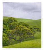 Spring At Del Valle Fleece Blanket