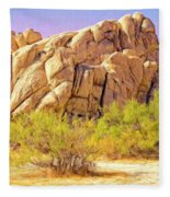 Spring At Joshua Tree Fleece Blanket