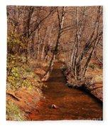 Spring At Red Rock Crossing Fleece Blanket