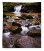 Spring At Table Rock Fleece Blanket