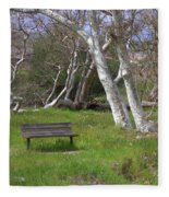 Spring Bench In Sycamore Grove Park Fleece Blanket