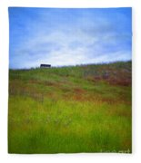 Spring Bench Fleece Blanket