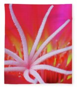Spring Blossom 19 Fleece Blanket