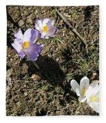 Spring Crocus Fleece Blanket