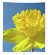Spring Daffodil Flowers Art Prints Blue Sky Baslee Troutman Fleece Blanket