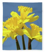 Spring Daffodil Flowers Art Prints Canvas Framed Baslee Troutman Fleece Blanket