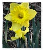 Spring Daffodil Fleece Blanket