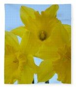 Spring Daffodils 2 Flowers Art Prints Gifts Blue Sky Fleece Blanket