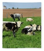 Spring Day With Cows On An Amish Cattle Farm Fleece Blanket