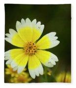 Spring Flowers Shell Road Fleece Blanket