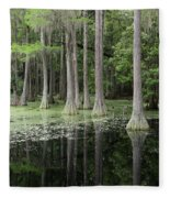 Spring Green In Cypress Swamp Fleece Blanket