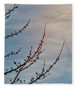 Spring In The Air Fleece Blanket