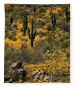 Spring In The Sonoran Desert  Fleece Blanket