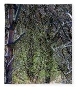 Spring In The Timber Fleece Blanket
