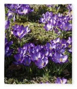 Spring Fleece Blanket