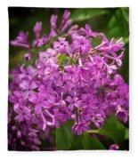 Spring Lilacs On Black Fleece Blanket