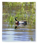 Spring Mallard 2010 Fleece Blanket