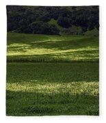 Spring Meadows Of Wildflowers Fleece Blanket