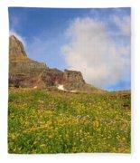 Spring Mountain Fleece Blanket