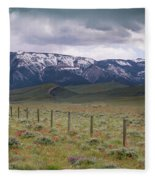 Spring On Chapman Bench Fleece Blanket