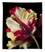 Spring Parrot Tulip Fleece Blanket