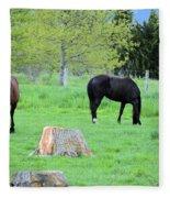 Spring Pastures Fleece Blanket